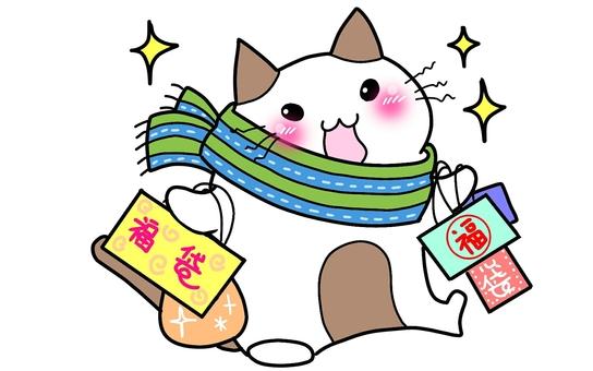 Lucky bag cat