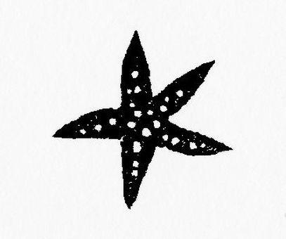 Small starfish to dance