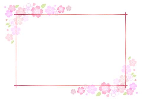 Cherry blossoms 392
