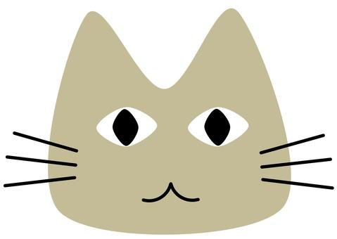 고양이의 얼굴