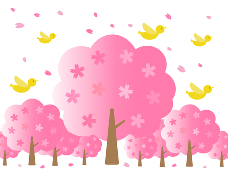 벚꽃 나무와 노란 새