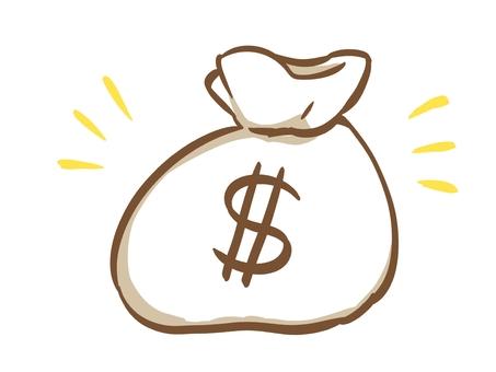 Money bag $