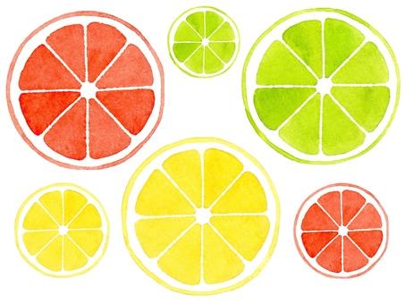 [Watercolor] Lemon slicing material set