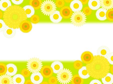 꽃 프레임 29