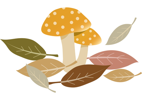 Mushrooms and fallen leaves