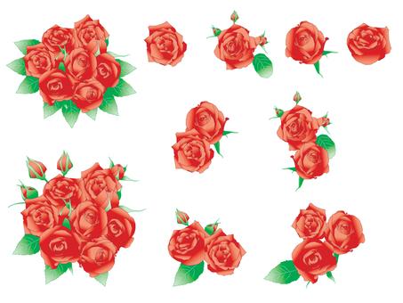 Rose _ Set