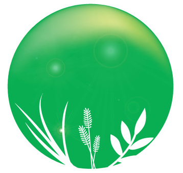 식물 디자인