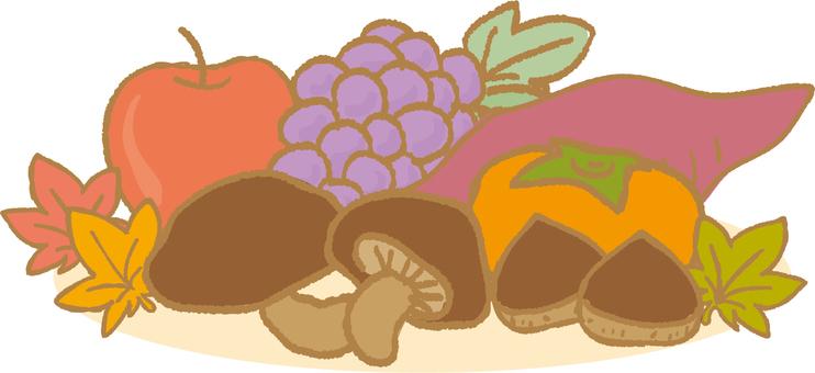Autumn food illustrations