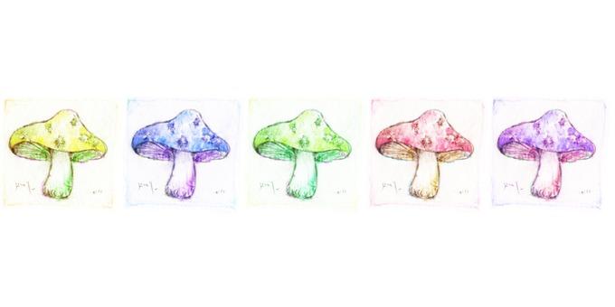 Forest mushroom 5 color set