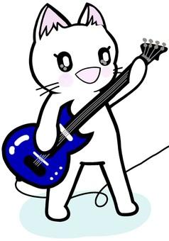 기타 고양이 고양이 연주 특기 밴드