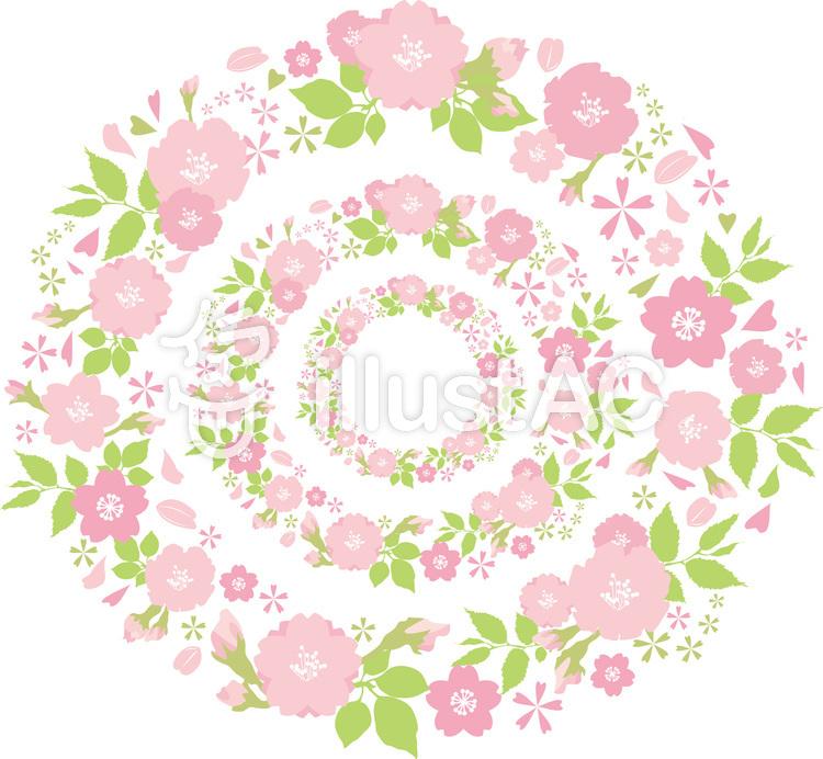 フレーム飾り枠桜花束リースピンク花春丸円イラスト No 366607無料