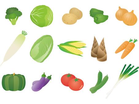 야채 세트