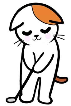 퍼팅 연습을하는 고양이 골프