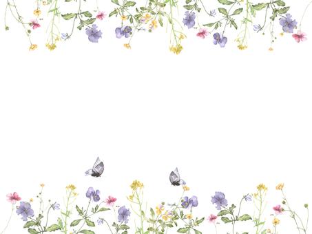 Flower frame 238 - cute feeling, pansy flower frame