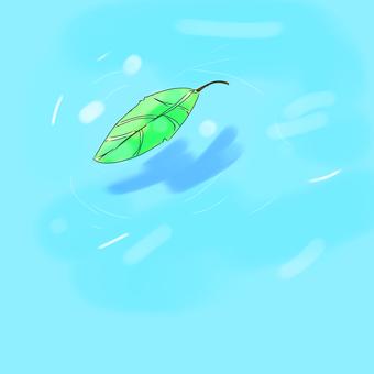 수면에 떨어지는 나뭇잎 (간단)