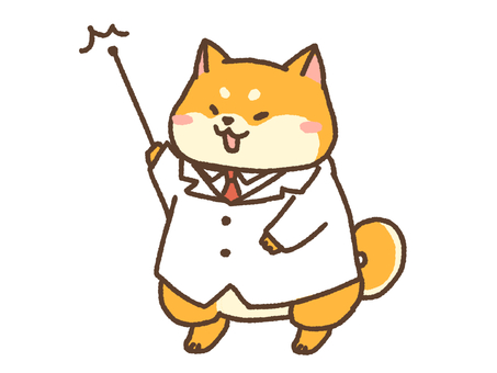 Doctor Shiba