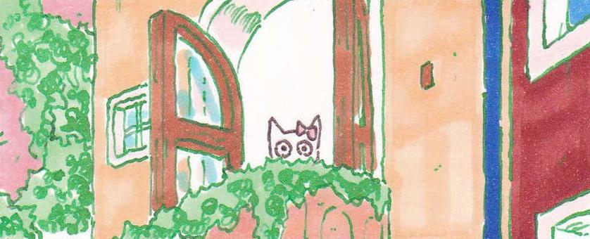 White cat on the windowsill