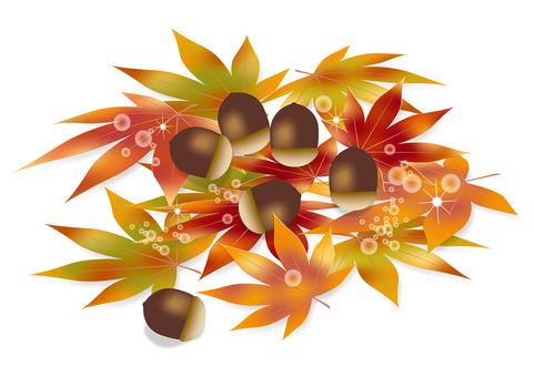 Autumn leaves & acorns 8