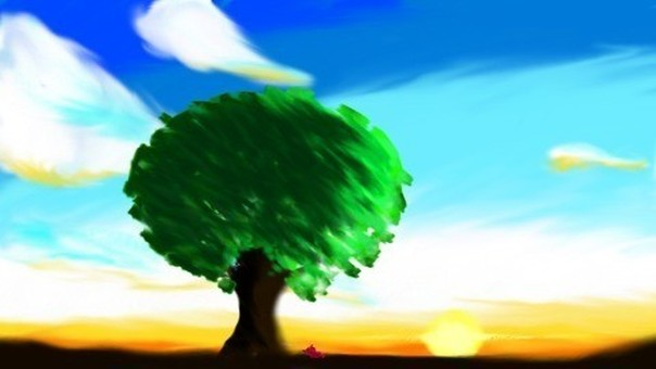 아사히과 나무와 프티 곤