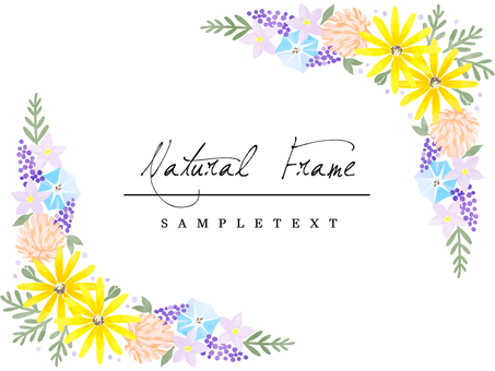 自然框架材料41多彩