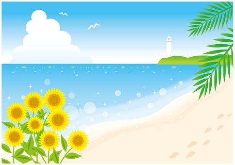 可以看到灯塔的海滩的向日葵