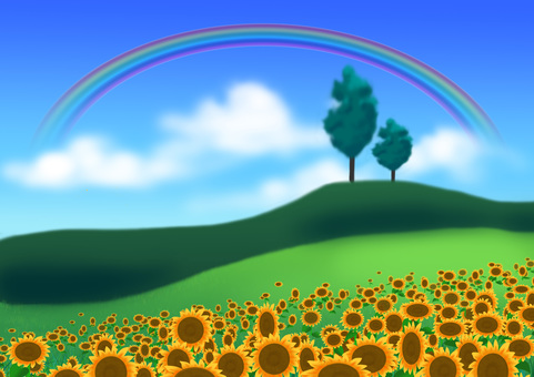 Rainbow and sunflower field