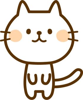 흰 고양이