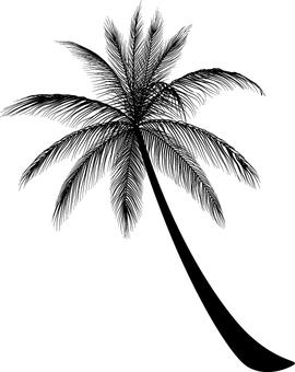 Palm tree 2_ silhouette