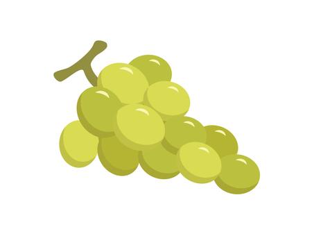 Grape (Muscat)