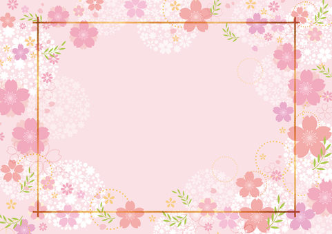Cherry blossoms 363