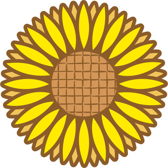 Sunflower 02