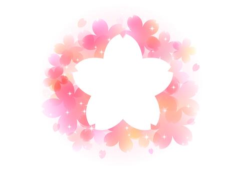Cherry blossoms 50