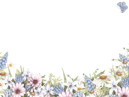 Flower frame 134 - Spring Blue Muscari flower frame