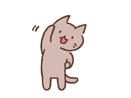 ラジオ体操をするネコ