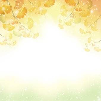 Ginkgo background material