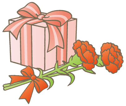 Carnation and gifts - A