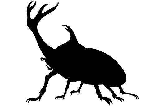 Beetles Silhouette