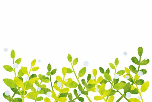 프레임 / 잎 그린 물방울