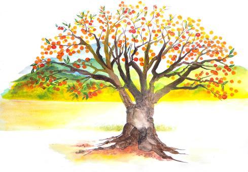 Persimmon tree hidden letter is LOVE