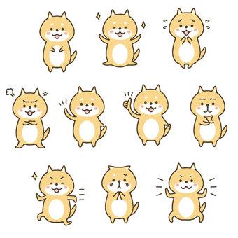 Cute hand drawn shiba inu set