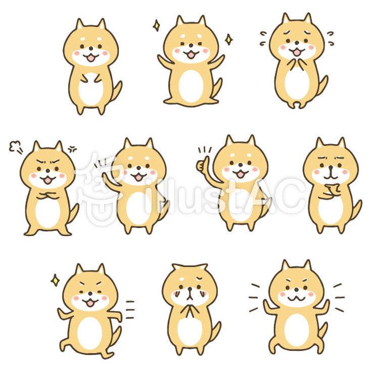 かわいい手描きの柴犬セットのイラスト