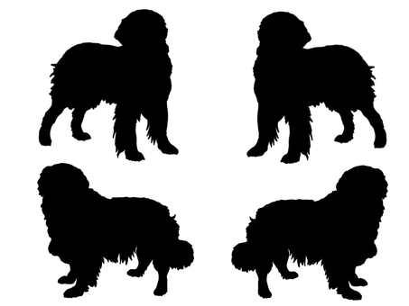 Retriever silhouette 2
