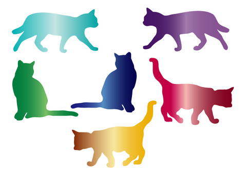 Colorful cat silhouette