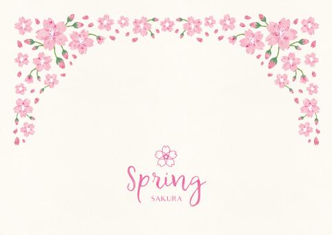 Spring background frame 011 Sakura watercolor