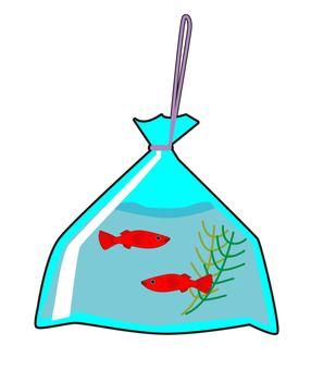 Goldfish scoop - take-away