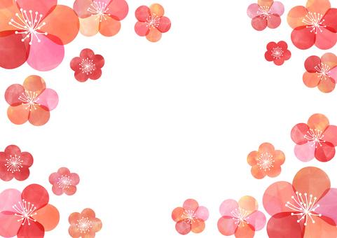 Plum _ Pastel background