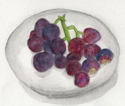 Grapes that can be eaten with skin
