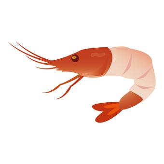 Shrimp's Bitter