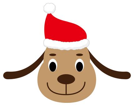 Dog wearing a santa cap
