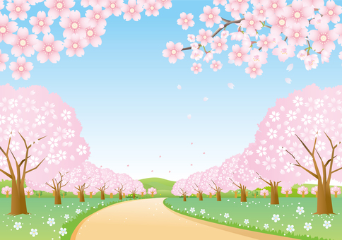 Scenery of cherry tree lined aisle